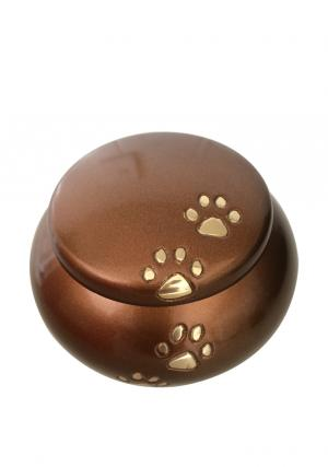 pet ashes uk