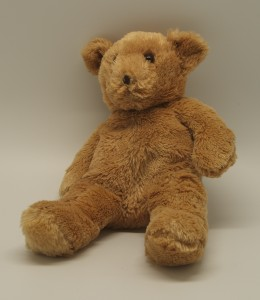 Huggable Teddy Bear Urns